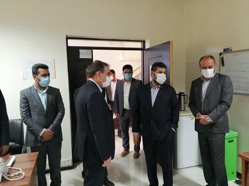 توضیح رئیس سازمان ملی استاندارد درباره ذرتهای آلوده انبارهای بندر امام