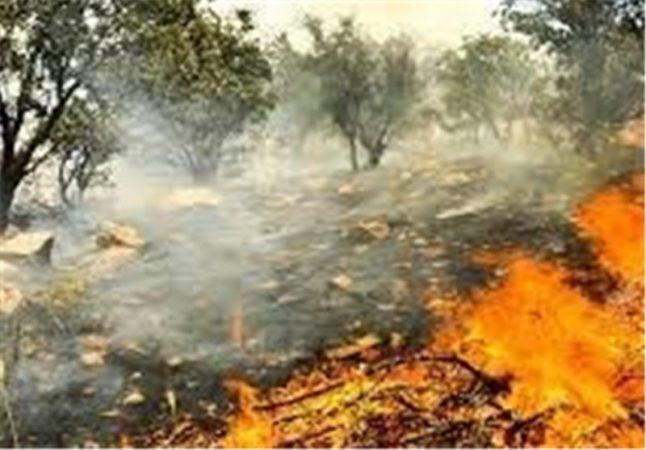 آمادگی ارتش برای مقابله با آتشسوزیهای احتمالی خوزستان