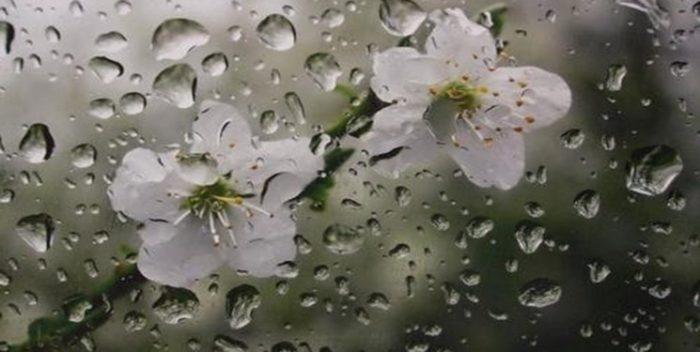 پیشبینی بارشهای پراکنده در خوزستان