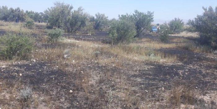 طی ۷۲ ساعت گذشته ۵ مورد آتش سوزی در خوزستان رخ داد/ عامل آتش سوزی انسانی است