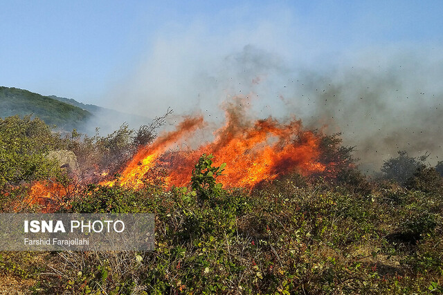 فصل آتشسوزیهای جنگلی خوزستان از راه رسیده است
