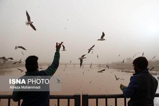 خوزستان امروز هم خاکی میشود