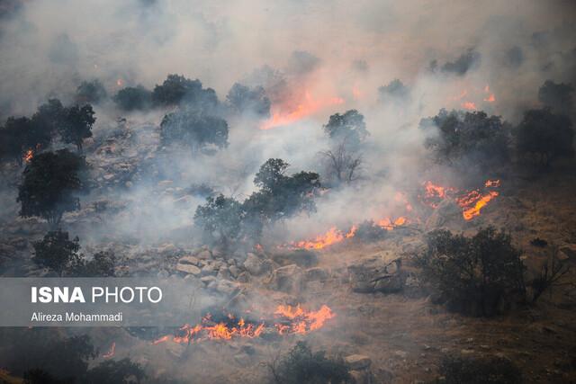 مجازات حبس در انتظار عاملان آتشسوزیهای جنگلی