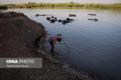 """برداشت آب شرب آلوده به فضولات و فاضلاب، از رودخانه """"شاوور"""""""