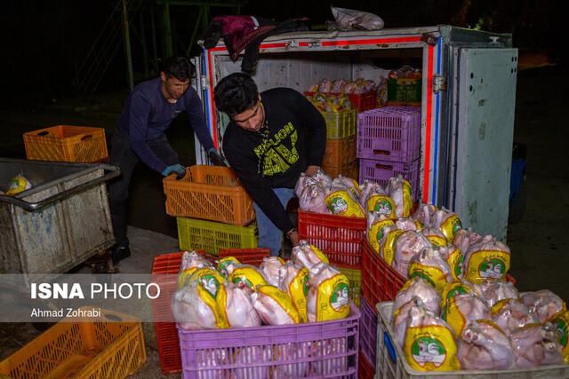تمایل فروش مرغ منجمد به خوزستان / احتمال بهبود وضعیت در هفته جاری