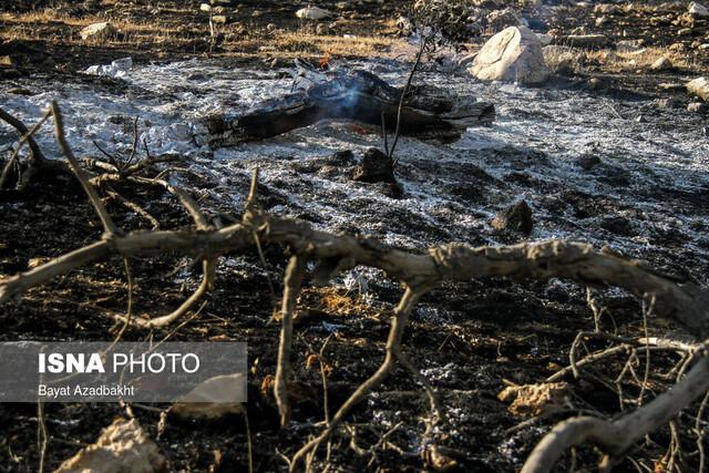پیشبینی افزایش موارد حریق در جنگلهای خوزستان